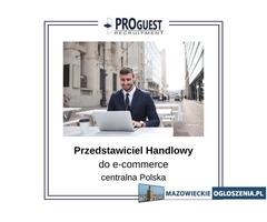 Przedstawiciel Handlowy do e-commerce, branża sanitarno-grzewcza, centralna Polska