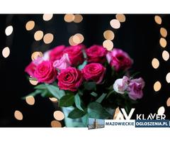 Pracownik produkcji kwiatów i na sortowni- owoce, warzywa Holandia